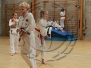 2014 - Sensei Trimble Course (July)